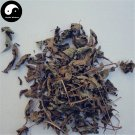 Zi Zhu Cao 紫珠草, Folium Callicarpae Formosanae, Taiwan Beautyberry Leaf 100g