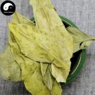 Gan Ju Ye 甘橘葉, Tangerine Leaf 200g
