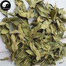 Luo Bu Ma Ye 羅布麻葉, Dogbane Leaf, Folium Apocyni Veneti 100g