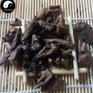 Qing Long Yi 青龙衣, Hu Tao Qing Pi, Exocarpium Juglandis, Exocarp of English walnut 500g