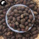 Pu Kui Zi 蒲葵子, Chinese Fanpalm Seed, Semen Livistonae Chinensis 100g