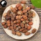 Hong Dou Kou 紅豆蔻, Fructus Galangae, Galanga Seed 500g