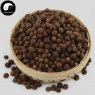 Wu Tong Zi 梧桐子, Phoenix Tree Seed, Semen Firmianae 500g