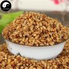 Bai Zi Ren 柏子仁, Semen Platycladi, Platycladi Seed 50g