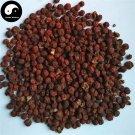 Chi Yang Zi 赤陽子, Jiu Bing Liang, Fortune Firethorn Fruit, Huo Ji Guo 500g
