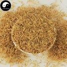 Wu Gu Chong 五谷虫, Chrysomyia Megacephala (Fabricius), worm of all sorts grains 500g