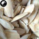 Hai Piao Xiao 海螵蛸, Cuttlebone, Cuttlefish Bone 100g