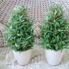 TWO GREEN FAUX CONE SHAPED TOPIARY PLANTS IN SHABBY POTS  ***SO PRETTY**
