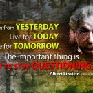 Albert Einstein Physicist Art 32x24 Poster Decor
