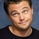 Leonardo DiCaprio Actor Star Art 32x24 Poster Decor