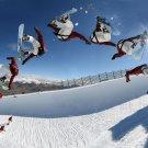Snowboard Art 32x24 Poster Decor