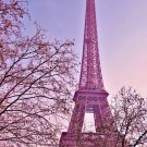 Eiffel Tower Landscape Art 32x24 Poster Decor