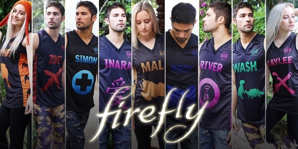Firefly TV Show Art 32x24 Poster Decor