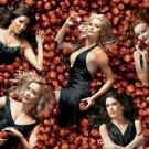 Desperate Housewives TV Show Art 32x24 Poster Decor