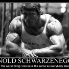 Arnold Schwarzenegger Bodybuilder Mr Olym 32x24 Poster Decor