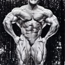 Jay Cutler Muscle Male Art 32x24 Poster Decor