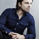 Sebastian Stan Actor Star Art 32x24 Poster Decor