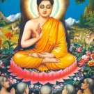 Buddha Shakyamuni Portrait Art 32x24 Poster Decor