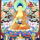 Buddha Shakyamuni Portrait Art 32x24 Poster Decor