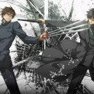 Fate Zero Anime Art 32x24 Poster Decor