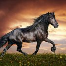 Running Horse Art 32x24 Poster Decor