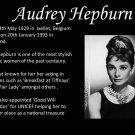 Audrey Hepburn Movie Star Art 32x24 Poster Decor
