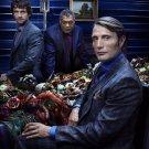 Hannibal TV Show Art 32x24 Poster Decor