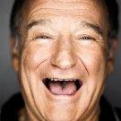 Robin Williams Actor Star Art 32x24 Poster Decor