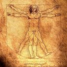Vitruvian Man Art 32x24 Poster Decor
