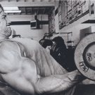 Bodybuilding Art 32x24 Poster Decor