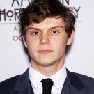 Evan Peters Actor Star Art 32x24 Poster Decor