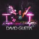 DavidGuetta Music Star Art 32x24 Poster Decor