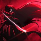 Akame Ga Kill Anime Art 32x24 Poster Decor