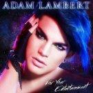 Adam Mitchel Lambert Music Star Art 32x24 Poster Decor