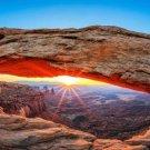 Canyonlands National Park Art 32x24 Poster Decor