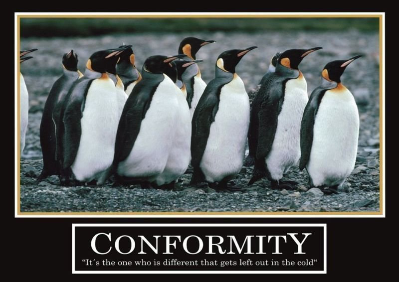 Penguins Leadership Motivational Art 32x24 Poster Decor