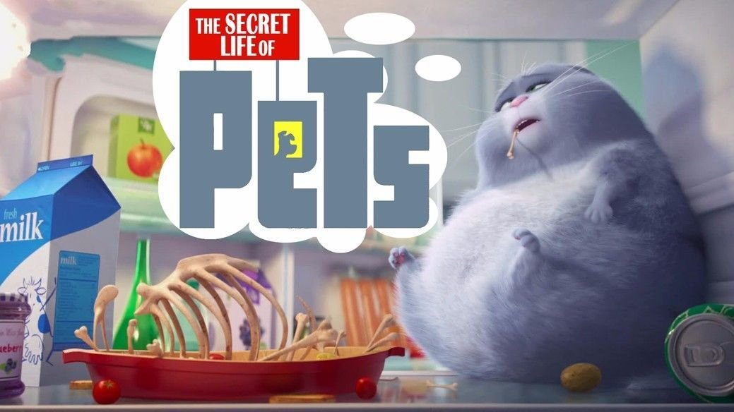 The Secret Life Of Pets Hot Movie Art 32x24 Poster Decor