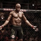 Anderson Silva Art 32x24 Poster Decor