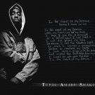 Tupac 2PAC Hip Hop R B Music Star Art 32x24 Poster Decor