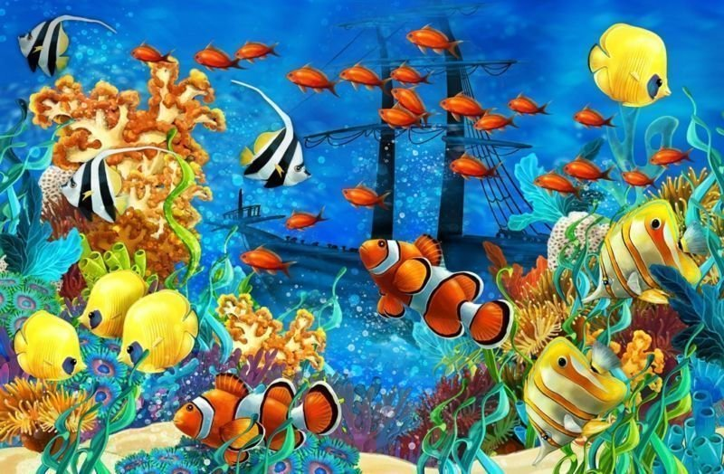 Fish Sea Ocean Art 32x24 Poster Decor