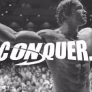 Arnold Schwarzenegger Bodybuilder Mr Olym Art 32x24 Poster Decor