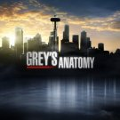 Greys Anatomy TV Show Art 32x24 Poster Decor