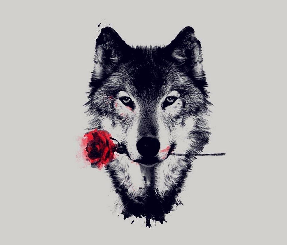 Wolf Wild Nature Animals Art 32x24 Poster Decor