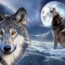 Wolf Wild Nature Animals Art 32x24 Poster Decor