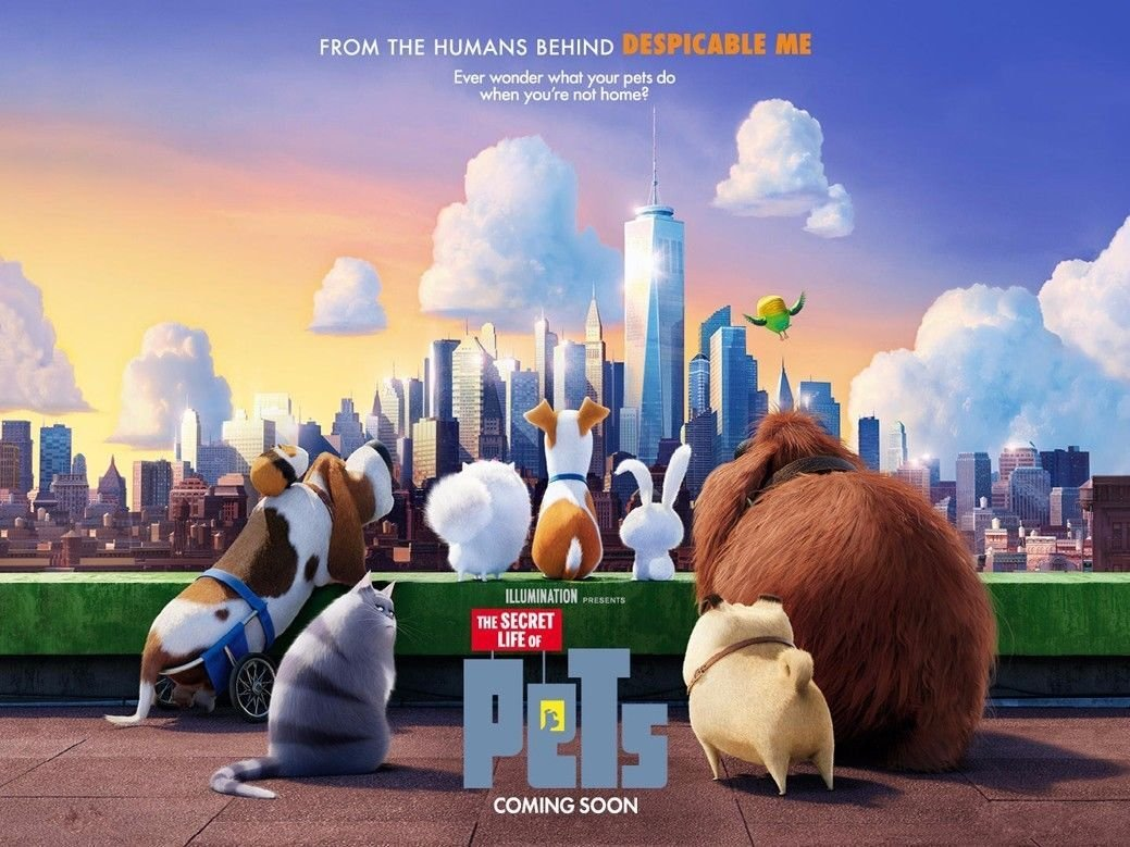 The Secret Life Of Pets Hot Movie Wall Print POSTER Decor 32x24