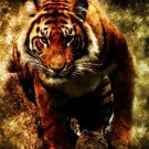 The Ferocious Tiger Art Wall Print POSTER Decor 32x24