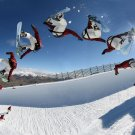 Snowboard Wall Print POSTER Decor 32x24