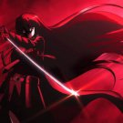 Akame Ga Kill Anime Wall Print POSTER Decor 32x24