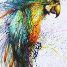 Watercolour Achilles Bird Dove Wall Print POSTER Decor 32x24