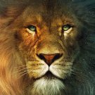 Fire Lion Animal Wall Print POSTER Decor 32x24